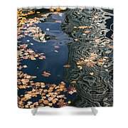 Skyscrapers' Reflections And Fallen Autumn Leaves Shower Curtain