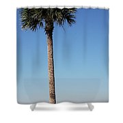 Sunshine Skyway Bridge  Shower Curtain