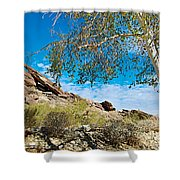 Slanted Rocks And Sycamore Tree  In Andreas Canyon In Indian Canyons-ca Shower Curtain