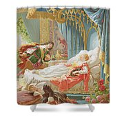 Sleeping Beauty And Prince Charming Shower Curtain