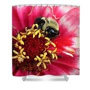 Sleeping Bumble Bee Shower Curtain
