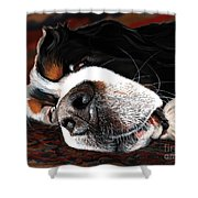 Sleeping Dogs Lie Shower Curtain