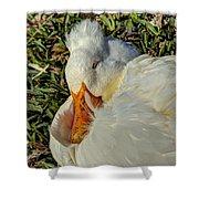 Sleeping Duck Shower Curtain