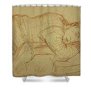 Sleeping Figure Shower Curtain