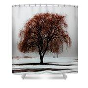 Sleeping Willow Shower Curtain