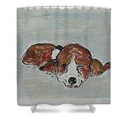 Sleepyhead Shower Curtain