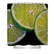 Sliced Limes Shower Curtain