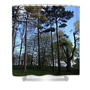 Slim Trees Shower Curtain