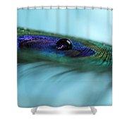 Slipping Away Shower Curtain