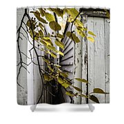 Sliver Shower Curtain
