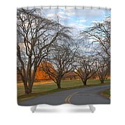 Sloan Park Sunset Shower Curtain