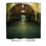 Slouching Towards Bethlehem Shower Curtain
