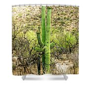 Slow Dancing Shower Curtain