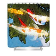 Slow Drift - Colorful Koi Fish Shower Curtain by Sharon Cummings