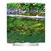 Slow Moving Sream Shower Curtain