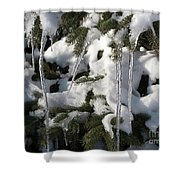 Slow Snow Melt Shower Curtain