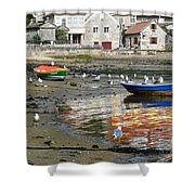 Small Boats And Seagulls In Galicia Shower Curtain