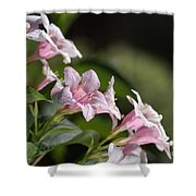 Small Flowers Shower Curtain