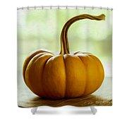 Small Orange Pumpkin Shower Curtain