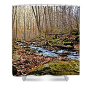 Small Pennsylvania Creek In Autumn Shower Curtain