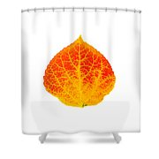 Small Red And Yellow Aspen Leaf 1 - Print Version Shower Curtain