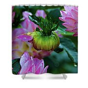 Small Speaks Volumes Shower Curtain