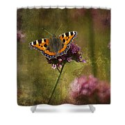 Small Tortoiseshell Butterfly Shower Curtain