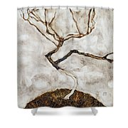 Small Tree In Late Autumn Shower Curtain