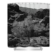 Small Tree Shower Curtain