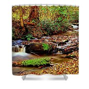 Small Waterfall And Stream 2 Shower Curtain