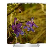 Small Wild Blossoms Shower Curtain