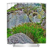 Smartweed Just Below Huayna Picchu's Peak-peru  Shower Curtain