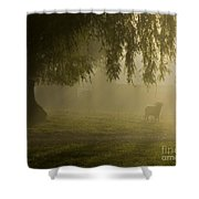 Smelly Goat In The Mist Shower Curtain