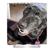 Smile For The Camera Shower Curtain