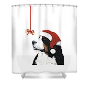 Smile Its Christmas Phone Shower Curtain