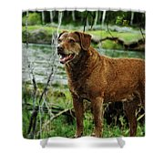 Smile Now Shower Curtain