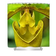 Smile - Orchid Art Photograph By Sharon Cummings Shower Curtain