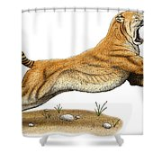 Smilodon Saber-toothed Tiger Shower Curtain