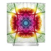 Smoke Art 28 Shower Curtain