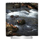Smokey Mountain Stream In Autumn No.2 Shower Curtain