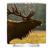 Smoky Mountain Bugle Shower Curtain