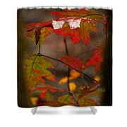 Smoky Mountain Color II Shower Curtain