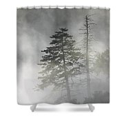 Smoky Mountain Mist Shower Curtain