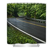 Smoky Mountain Road After Spring Rain E70 Shower Curtain