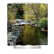 Smoky Mountian River Shower Curtain by Sandy Keeton