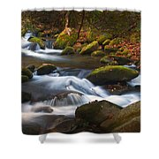 Smoky Mtn Autumn Stream Shower Curtain