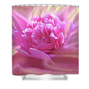 Smooth Pink Shower Curtain
