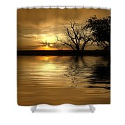 Smooth Yellow Shower Curtain