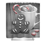 Snack For Santa Shower Curtain by Juli Scalzi