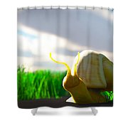 Snail And Grass... Shower Curtain